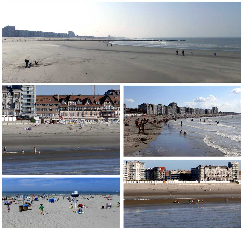 collage strand